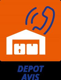 Overnight: Icon Depot Service